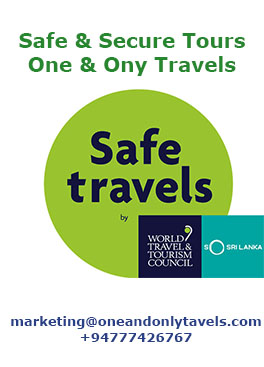 Safe & Secure Tours-One & Only